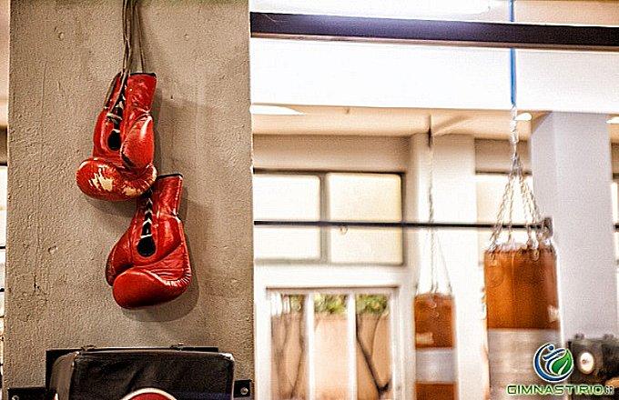 25€ από 50€ για έναν μήνα ή 49€ από 100€ για δύο μήνες συνδρομή για Πυγμαχία στο Perseas Boxing Club στο Γαλάτσι. Μάθε από κοντά το άθλημα της Πυγμαχίες υπό τις οδηγίες των καλύτερων προπονητών! εικόνα